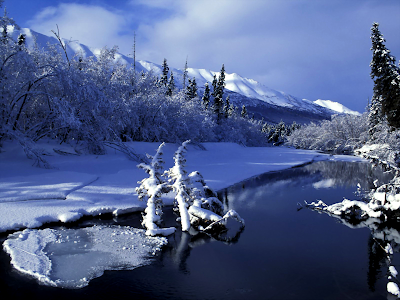eagle wallpaper. Eagle River Winter wallpaper,