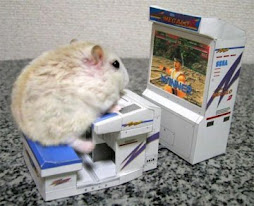 HAMSTER JOGANDO VIDEO GAME!