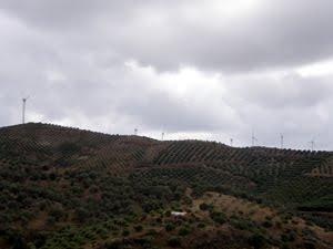 Σε βασική απειλή για τη βιοποικιλότητα εξελίσσεται ο αιολικός σταθμός στα Αστερούσια Όρη της Κρήτης
