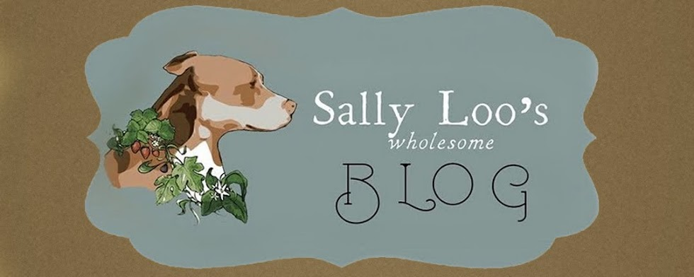 Sally Loo&#39;s Wholesome Cafe