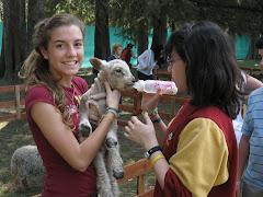 """LO NUEVO DE LOS ROBLES : GRANJA EDUCATIVA """"LA ESPERANZA"""""""
