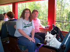Mike, Jeri & Lincoln on train in NH