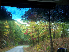 Blue Ridge thru M.H. windows