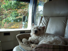 Lincoln in the co-pilot seat