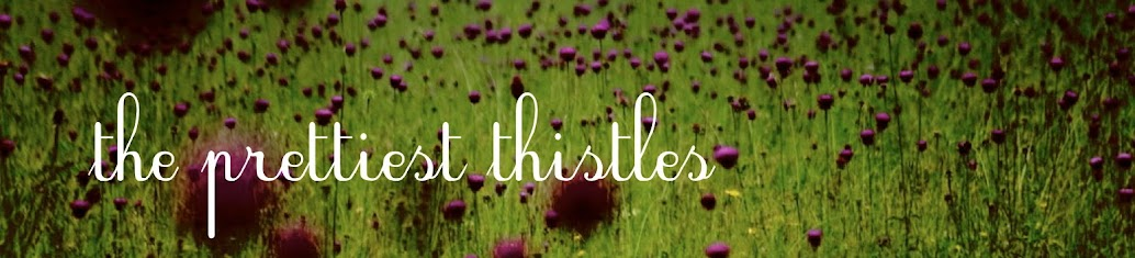 the prettiest thistles