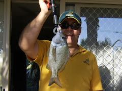 Noosa still has fish!