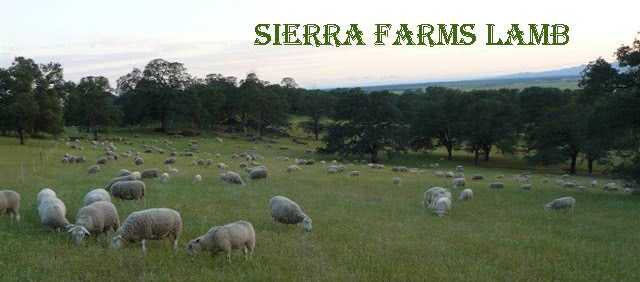 Sierra Farms Lamb