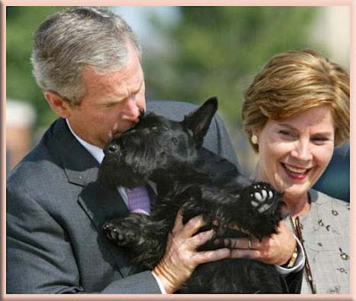 """President Bush with """"Scottish Terriers"""""""