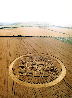 Crop Circle in Woolstone Hill pictures photos gallery