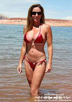 Liquid Metal Rio Bottom Bikini