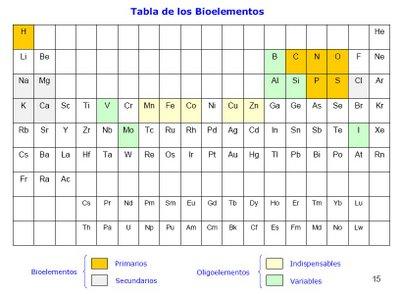 Los amos de la biologia los elementos quimicos en nuestro cuerpo son el carbono el hidrgeno el oxgeno el nitrgeno el fsforo y el azufre c h o n p s respectivamente urtaz Image collections