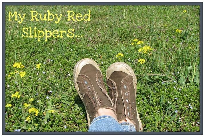My Ruby Red Slippers