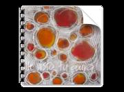 Catálogo de pintura · Painting catalog