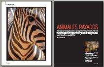 Animales rayados