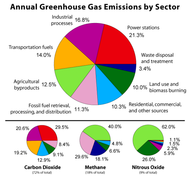 Sample essay on Green House Gases