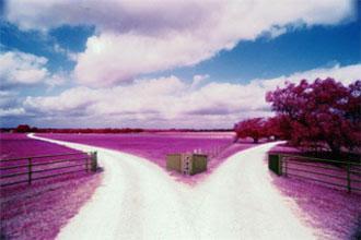 http://1.bp.blogspot.com/_sul_pw75xD0/TDnIWLqpeCI/AAAAAAAAAww/KcWG8tS2-Lo/s1600/Duas-estradas.JPG