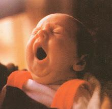 """""""Un recién nacido"""" en Cristo."""