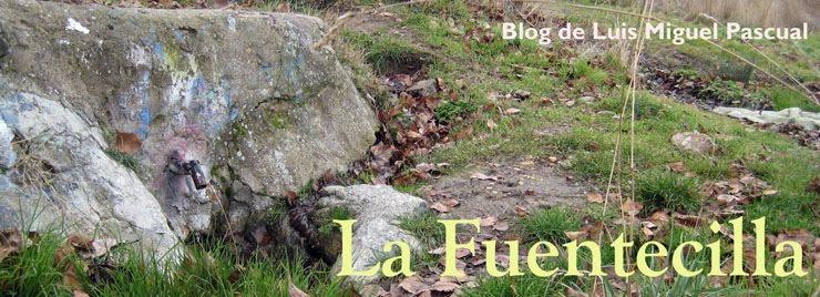 La Fuentecilla - Blog de Luis Miguel Pascual