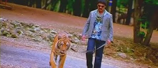 jayeebhava-nkr-tiger-dog-pet