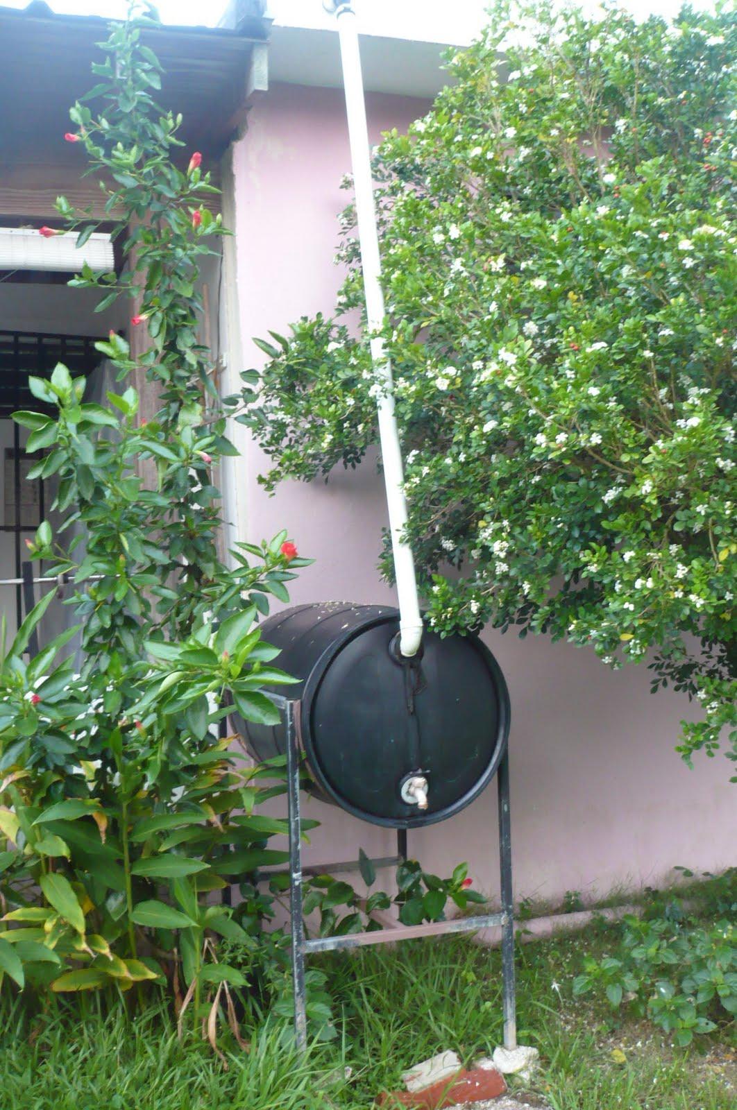 La vida en mi patio hay lugares d nde es ilegal recoger - Recoger agua lluvia ...