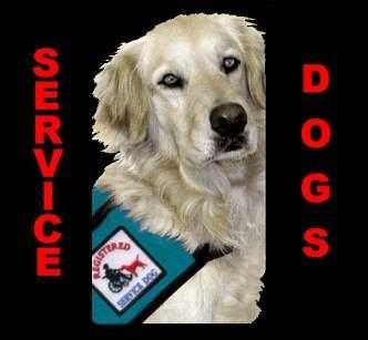 [servicedogs]