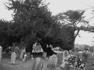 Lytchett Minster churchyard