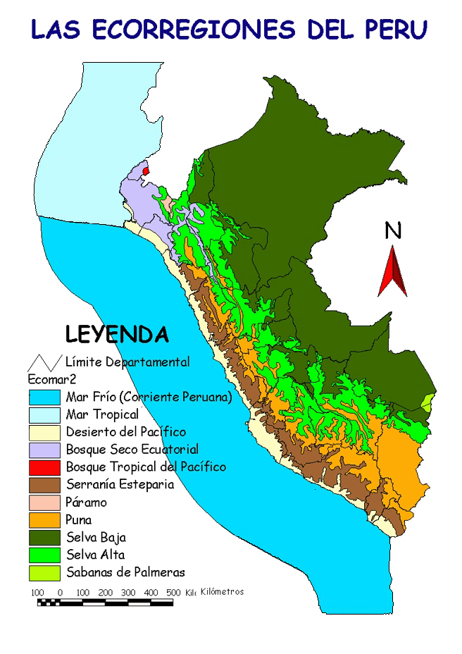 11. Ubica en el Mapa del Perú las Ecorregiones de la Amazonía