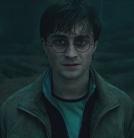 Feliz Aniversário, Harry Potter! | Ordem da Fênix Brasileira