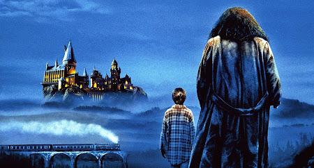 Começou 'Harry Potter e a Pedra Filosofal' agora no SBT! | Ordem da Fênix Brasileira
