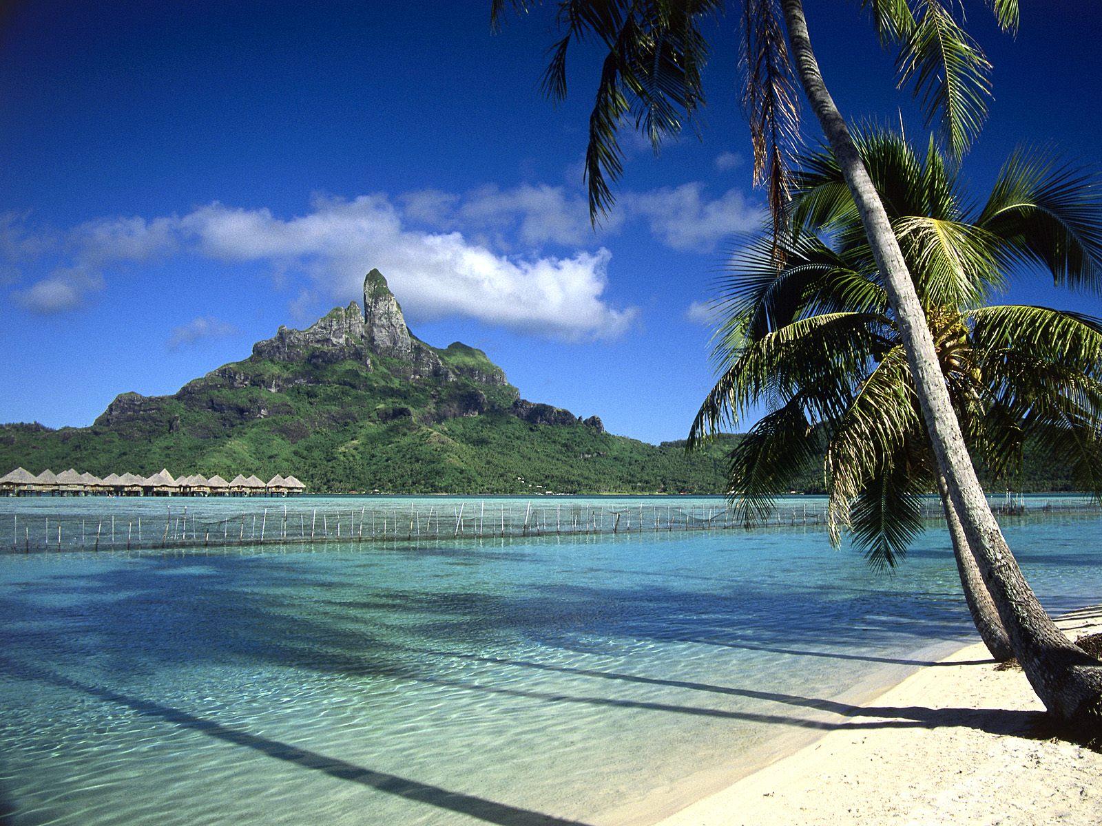 http://1.bp.blogspot.com/_sz2fJjO1XW8/THPeP3OY63I/AAAAAAAAB5o/DTxI9TvZ_ws/s1600/beach_bungalow-1499.jpg