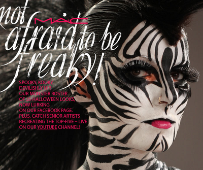 STEP-BY-STEP Zebra Face Paint For Halloween