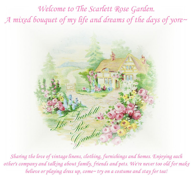 The Scarlett Rose Garden