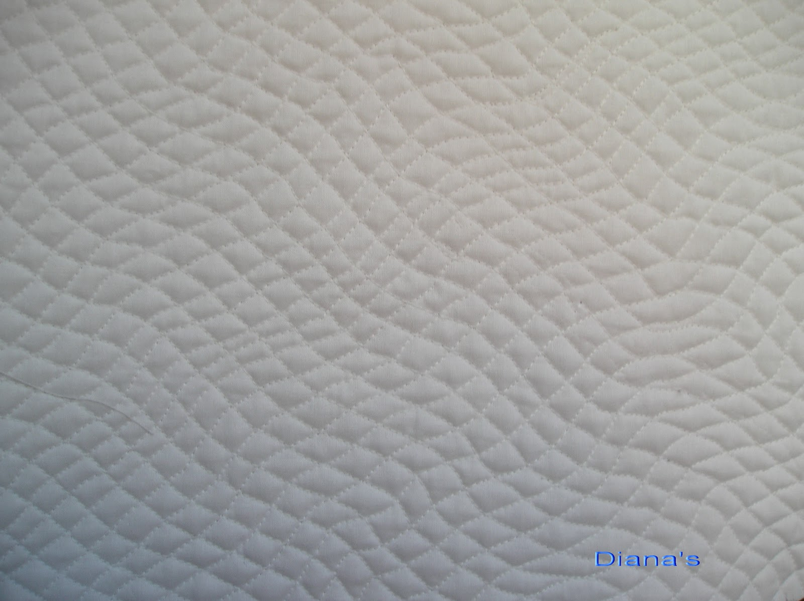 Creations by Diana: Free Motion Sampler Quilt