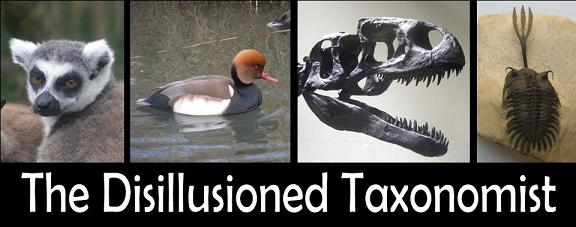 The Disillusioned Taxonomist