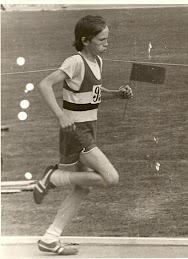 1974 Gola Hornet