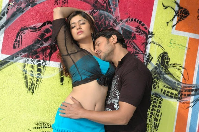 Actress Poonam Bajwa Navel Show Photos