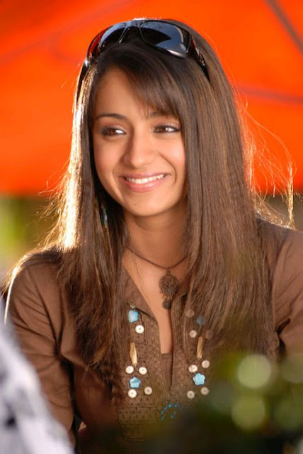 trisha hot stills
