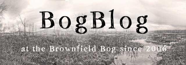 BogBlog