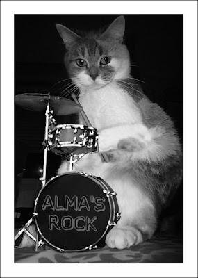 Batteur Des Stray Cats
