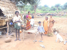Sholiga Tribals Encroached The Peripharl Areas