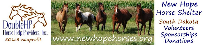 New Hope Horses Home Page