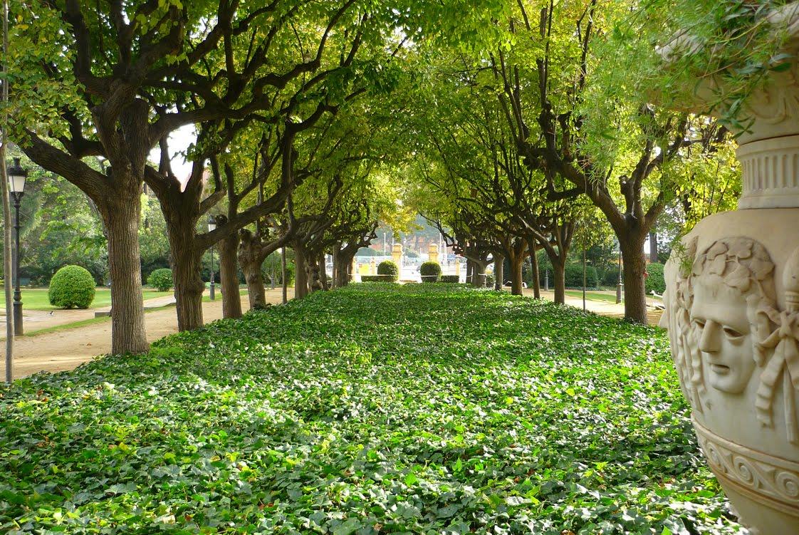 Veo veo jardins del palau de pedralbes 31 - Jardins del palau ...