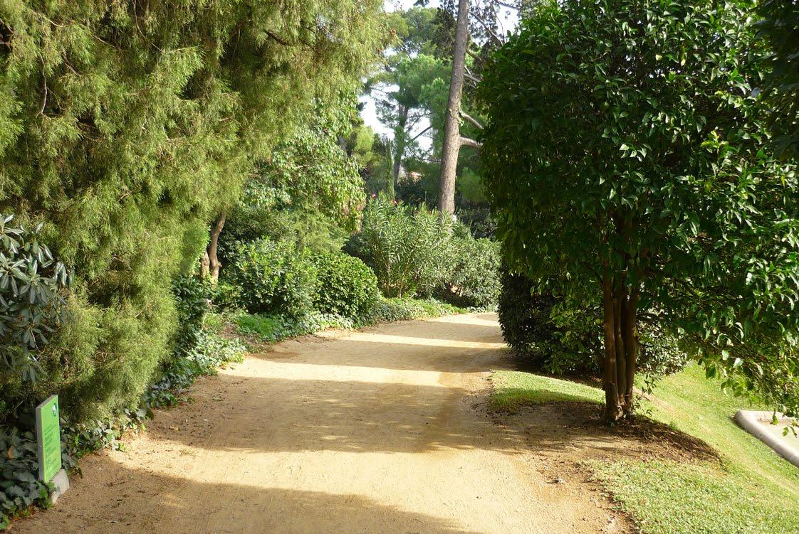 Veo veo jardins del palau de pedralbes 46 - Jardins del palau ...