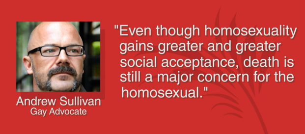 critique homosexuality and andrew sullivan