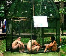 HOMO SAPIENS - Zoológico Matecaña. Pereira - Colombia