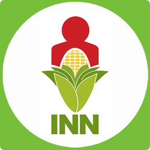 instituto nacional nutricion: