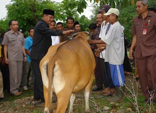 Janji Presiden SBY di Lereng Tambora Simpang Siur