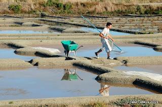 Guérande paludier dans les marais salants
