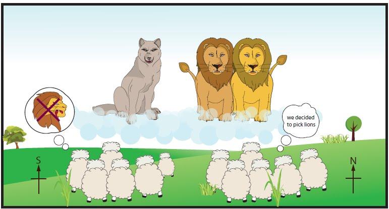 Kết quả hình ảnh cho sheep choose lion or wolf