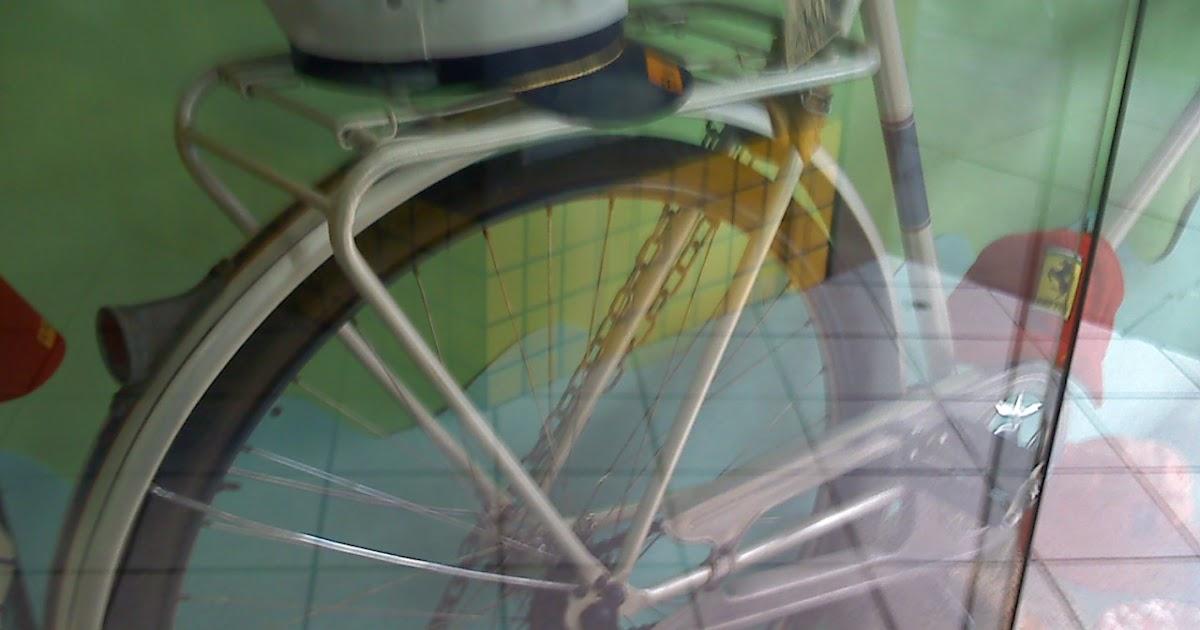 Bicicletas antigas svalan vitrine - Sinonimos de encantar ...